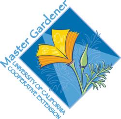 Poppy Logo png