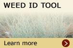weed_id_tool